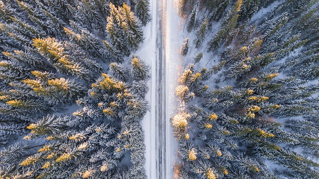 road between trees in the winter. Best routes for moving